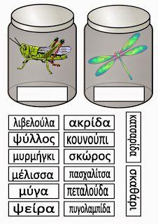 Ελένη Μαμανού: Έντομα Bugs, Clip Art, Activities, School, Creative, Crafts, Spring, Creepy, Facebook