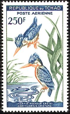 Malachite Kingfisher stamps - mainly images - gallery format