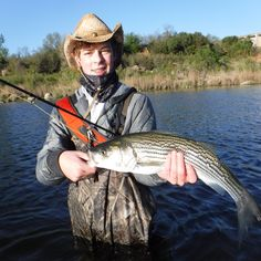 """Our Thought Process I guess the title should actually read, """"What We Have Learned About Striped Bass Fly Fishing On The Brazos River, Below Possum Kingdom Dam,"""" but that's a mouth…"""