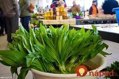 Celery, Pesto, Food And Drink, Fresh, Vegetables, Drinks, Plants, Food Ideas, Medicine