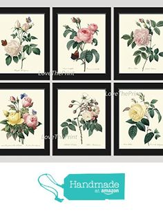 Botanical Print Set of 6 Antique Beautiful Redoute Roses Pink Yellow White Butterfly Garden Nature Plant Flowers Home Room Decor Wall Art Unframed from LoveThePrint https://www.amazon.com/dp/B018SYP5KE/ref=hnd_sw_r_pi_dp_JiLwxbCVCPY18 #handmadeatamazon