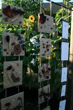 Nature outdoor art display - Creative Children's Center ≈≈