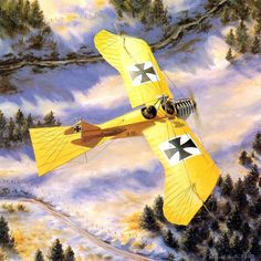 Taube at War Windsock - Russell Smith