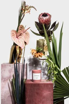 love the tropical flowers and art direction in this product shot