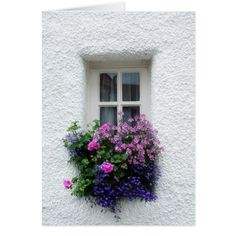 house flower boxes 389139224031602809 - Beautiful window box Source by Love Flowers, Beautiful Flowers, Purple Flowers, Pink Purple, Flower Window, Pot Jardin, White Building, Garden Windows, Cottage Windows