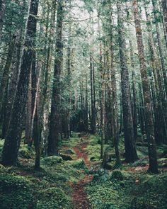 ★ahimsa★  grace–upon–grace: Kyle Kuiper