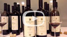 AIS Lecce: le otto annate del pregiato Patriglione casa Taurino. Guarda il video: http://www.salentoweb.tv/video/9414/ais-lecce-otto-annate-pregiato