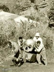 GIANT SKELETONS FOUND IN WISCONSIN - There were giants in the earth in those days; and also after that, when the sons of God came in unto the daughters of men, and they bare children to them, the same became mighty men which were of old men of renown.