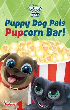 Create your own Popcorn Bar for your Puppy Party!