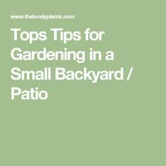 Tops Tips for Gardening in a Small Backyard / Patio