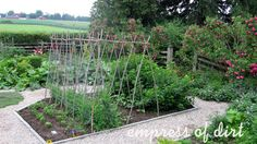 Kitchen garden...  I need to start one