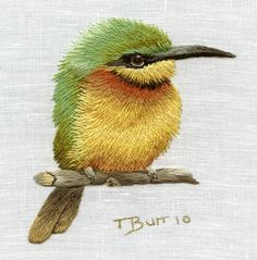 Embroidery Kits for Beginners | Trish Burr Embroidery Kit Little bee eater by TRISHBURREMBROIDERY