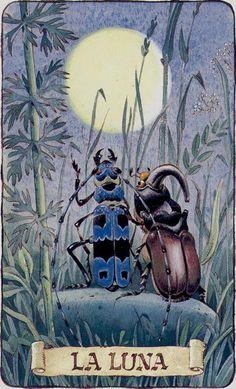 Tarot of the Gnomes, La Luna - Antonio Lupatelli Children's Book Illustration, Illustrations, The Moon Tarot, Sun Moon Stars, Tarot Readers, Major Arcana, Oracle Cards, Moon Art, Tarot Decks