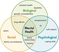 """One of a few useful """"Bio-psycho-social Well Being"""" pages for individual and group clients.:"""