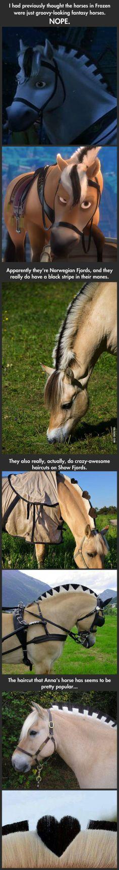 Frozen horses in real life