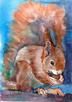 """""""5x7 Red Squirrel Eating Acorn Watercolor and Pen by Penny Lee StewArt"""" original fine art by Penny Lee StewArt"""