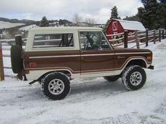 Vintage Chevy Trucks, Old Pickup Trucks, Antique Trucks, Classic Chevy Trucks, Classic Bronco, Classic Ford Broncos, Classic Cars, Bronco Truck, 2006 Jeep Wrangler