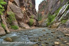 """Hiking the Zion Canyon Narrows """"Bottom Up"""""""