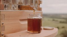 Flow Hive: Honey on Tap Directly From Your Beehive   Indiegogo