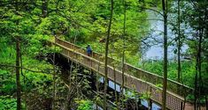 This 7.5 Km Waterfront Trail Takes You Through A Beautiful Nature Sanctuary In Ontario
