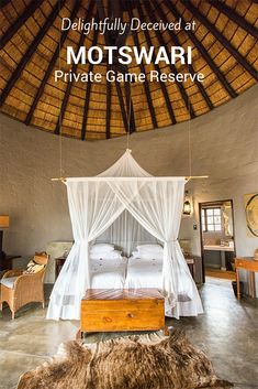 Motswari Private Game Reserve in South Africa's Timbavati Nature Reserve is a 4-star lodge with a 5-star reputation.