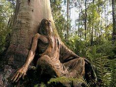 Sculptures by Bruno Torfs in Australia:
