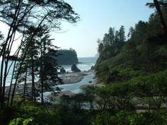 Coastal Highway Scene - Washington State-  USA-