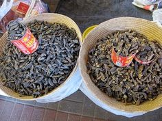 The most common ways to eat mopane worms are dried and fresh. Photo by leo laempel | Tour of Africa