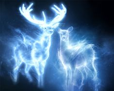 doe and stag patronus | Snape+and+lily+potter+same+patronus