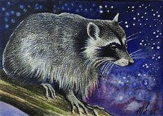 Raccoon Wildlife Art Melody Lea Lamb ACEO Print by MelodyLeaLamb (Art & Collectibles, Prints, Giclee, giclee, animal art, whimsical art, melody lea lamb, cute, charming, wildlife, colorful, small art, pocket art, illustration, raccoon, aceo)