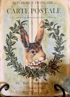 Vintage Labels, Vintage Cards, Vintage Postcards, Vintage Images, Easter Vintage, Lapin Art, Photo D Art, Rabbit Art, Bunny Art