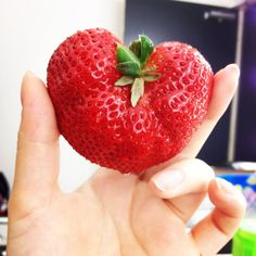 Yummmm!!! Can't wait for summer strawberry's!