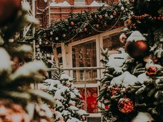 Winter Wallpaper, Christmas Tree, Holiday Decor, Home Decor, Teal Christmas Tree, Holiday Tree, Xmas Tree, Interior Design, Home Interior Design