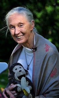 "The Eloquent Woman: Famous Speech Friday: Jane Goodall's ""What Separates Us From the Apes"""
