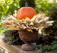 Pumpkins and Corn Husks