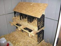 Pallet Ideas milk crate laying hen nests fm Building a Wood Shed from recycled wooden pallets site . lots of illustrated projects here! Keeping Chickens, Raising Chickens, Pet Chickens, Building A Wood Shed, Chicken Nesting Boxes, Laying Hens, Laying Boxes For Chickens, Chicken Laying Boxes, Nesting Boxes For Chickens