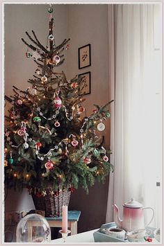 Potted Christmas Trees, Live Christmas Trees, Tabletop Christmas Tree, Christmas Mantels, Christmas Mood, Christmas Decorations, Christmas Ornaments, Holiday Decorating, Shabby Chic Christmas