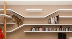 The Perfect Cat House by Thinking Design
