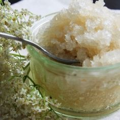 City foraging: Elderflower sorbet