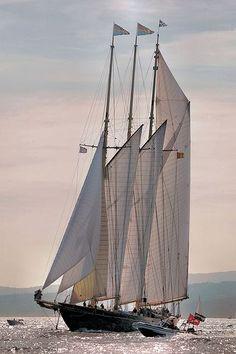Naval Architecture