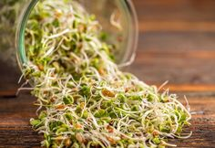 400 Seaweed Salad, Cabbage, Healthy Eating, Herbs, Wellness, Vegetables, Ethnic Recipes, Food, Filing