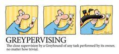 Another greyt Richard Skipworth cartoon!