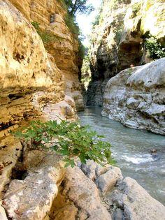 Gradeci Canyon, Albania