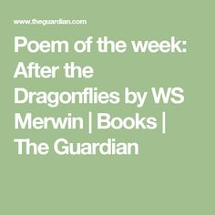Poem of the week: After the Dragonflies by WS Merwin | Books | The Guardian