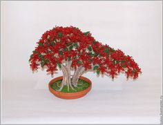 d109408437--tsvety-floristika-tsvetuschij-bonsaj-n4529.jpg 996×768 pixel
