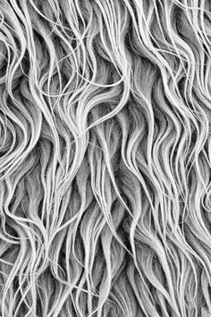 Marc delforge texture texture design, texture photography, t Patterns In Nature, Textures Patterns, Color Patterns, Print Patterns, 3d Texture, Natural Texture, Grey Hair Texture, Tactile Texture, Zbrush