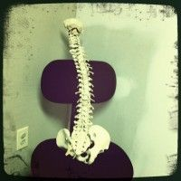 Osteopath or Chiropractor (or both)?