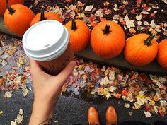 Autumn ~ We it!