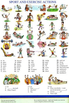 104 - SPORT AND EXERCISE ACTION - Picture Dictionary - English Study, explanations, free exercises, speaking, listening, grammar lessons, reading, writing, vocabulary, dictionary and teaching materials