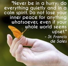 """Never be in a hurry; do everything quietly and in a calm spirit. Do not lose your inner peace for anything whatsoever, even if your whole world seems upset. Faith Quotes, Words Quotes, Wise Words, Life Quotes, Random Quotes, Quotable Quotes, Catholic Quotes, Religious Quotes, Sales Quotes"